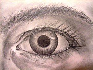 Kurs: Sehen lernen - Zeichnen lernen