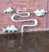Gezeiten-Fische bei Hochwasser